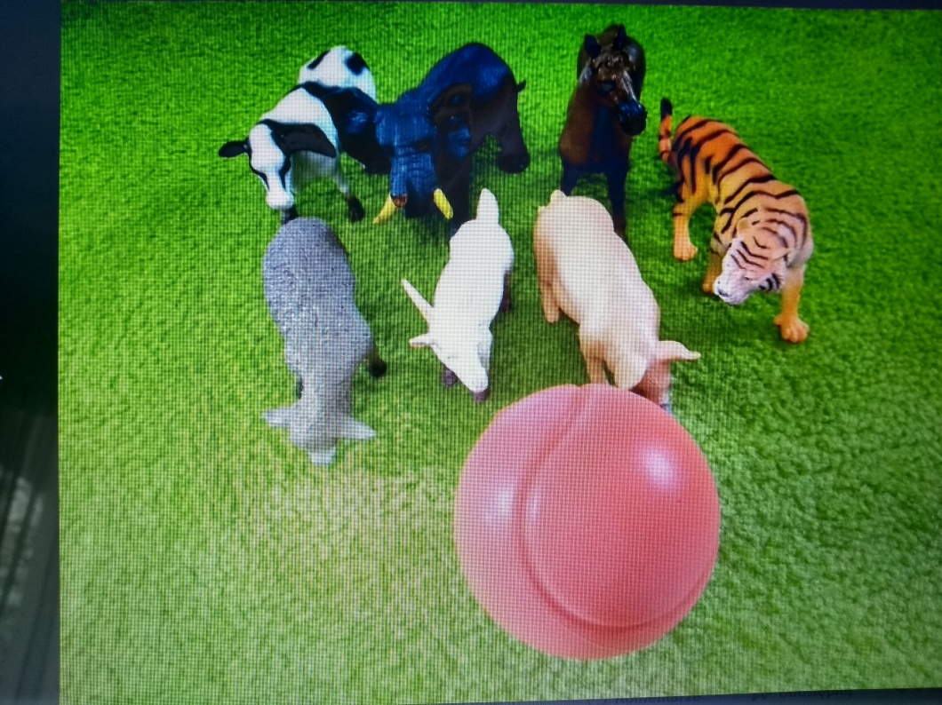 animal bowling.jpg