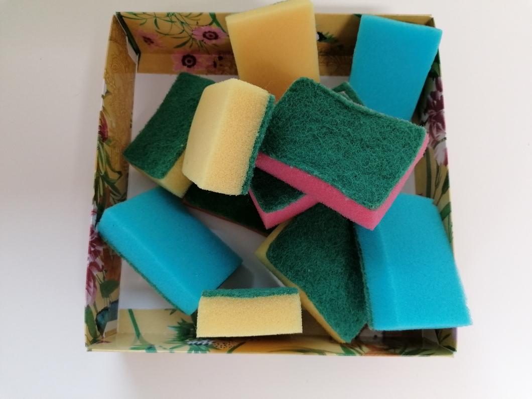 sponge lead in.jpg